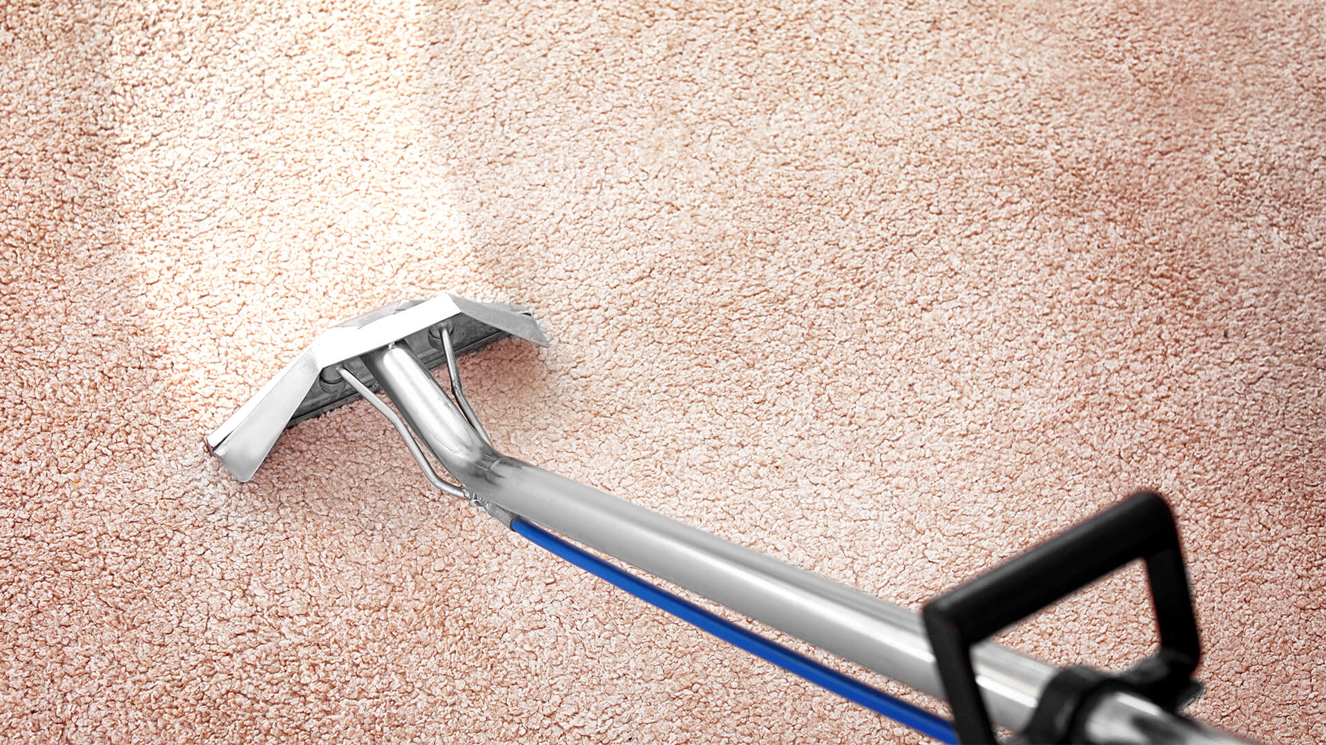 Carpet Cleaning - Wise Cleaners