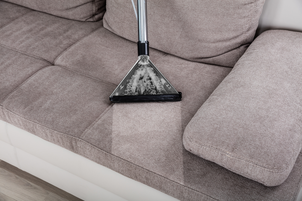 Steam Cleaning from Wise Cleaners